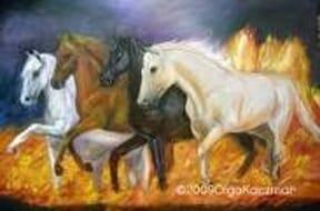 4horses